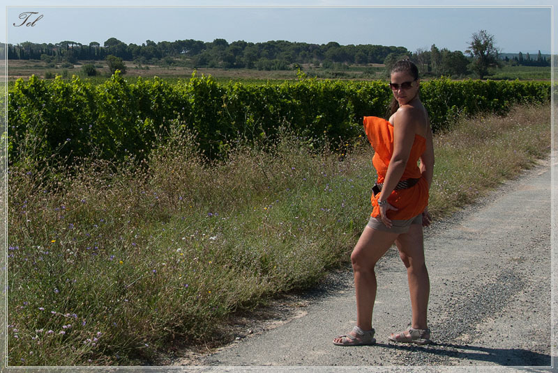 Прогулка в виноградниках