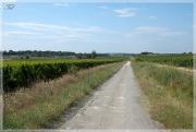 Дорога в Кароськово