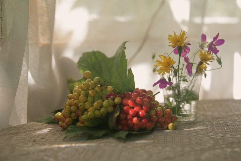 Август – начало урожая