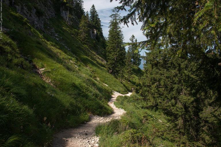 Как европейцы летом в горах отдыхают