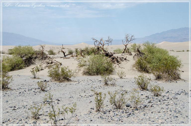 Американское путешествие. Долина Смерти.