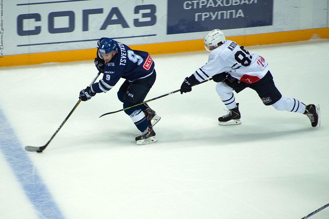 Фото: Динамо-Медвешчак