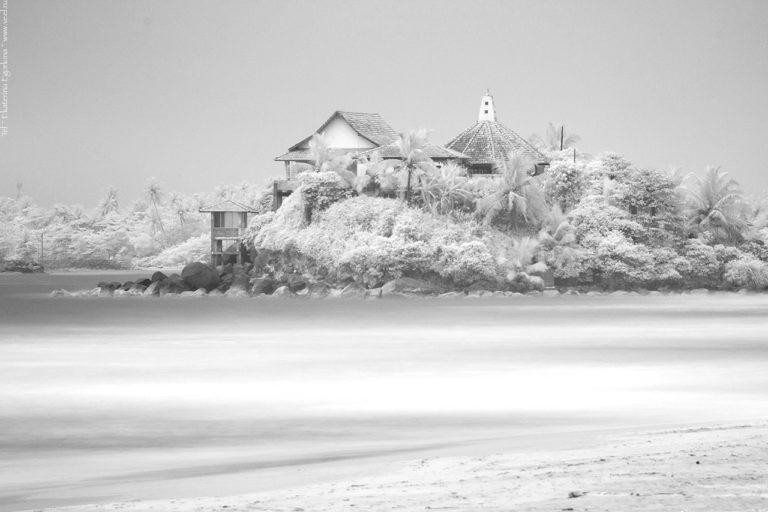 Фото: Шри-Ланка – два пейзажа.